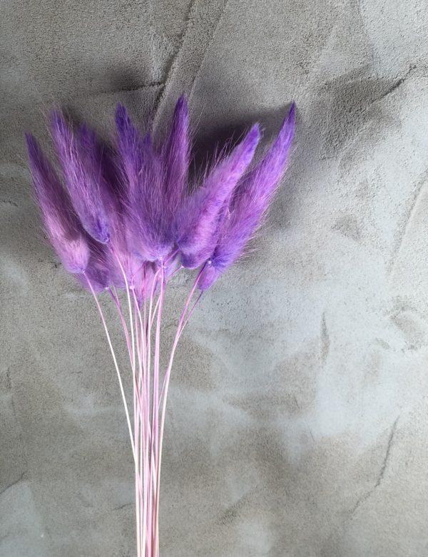 Purplebunnytails